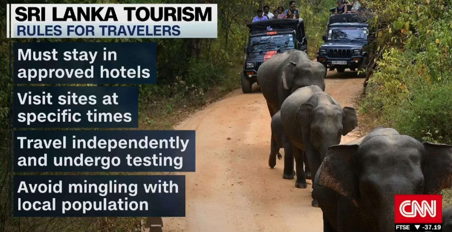 海外からの観光客を受け入れるための取り組み